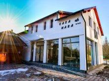 Accommodation Vadu Izei, Mara Guesthouse
