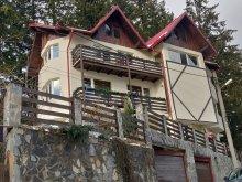 Casă de vacanță Ștrand Sinaia, Casa Adina
