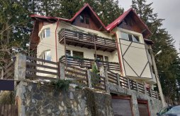 Vacation home near Ialomița Cave Monastery, Adina Vacation home