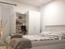 Cazare Agyagosszergény, Apartament Piknik Studio
