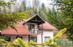 Villa Kercisora (Cârțișoara), Mara Villa