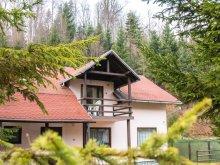 Villa Sibiu county, Mara Villa