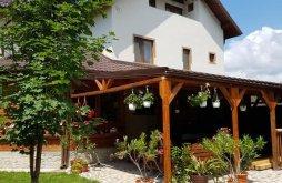 Pensiune Țuțuru, Casa Macovei