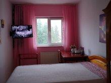 Cazare Bacău, Apartament Rodion Art Miozotis