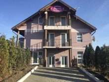 Accommodation Sibiu county, Osanu Guesthouse