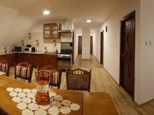 Accommodation Păltiniș-Ciuc, Ungurán Guesthouse