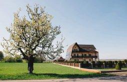 Accommodation Putna, Miorița Guesthouse