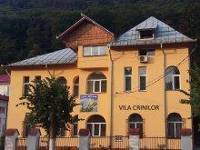 Accommodation Vâlcea county, Crinilor Villa