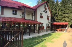 Accommodation Valea de Sus, Andre Vacation home