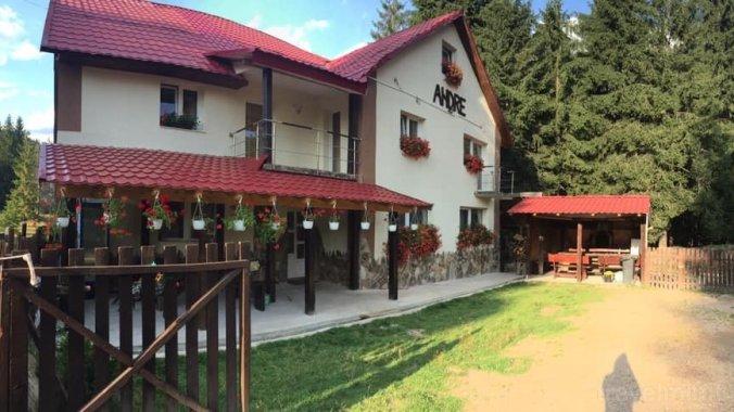 Casa de vacanță Andre Vârtop