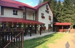 Casă de vacanță Leucușești, Casa de vacanță Andre