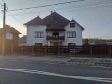 Szállás Farkasrév (Vadu Izei), Rednic Lenuța Vendégház