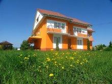 Accommodation Gura Văii, Vlad Villa
