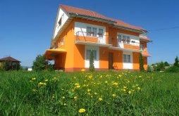 Accommodation Ruginoasa, Vlad Villa