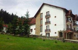 Cazare Runcu, Hotel Floare de Colț