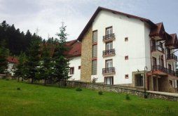 Hotel near Putna Monastery, Floare de Colț Hotel