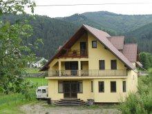 Villa Gura Văii, Grandemi Grațian Villa