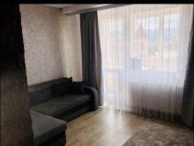 Accommodation Toplița, A&D Apartment