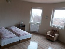 Accommodation Tiszatenyő, Aktiv Pihenés Guesthouse 4