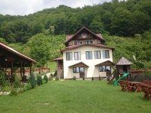 Pensiune Pleșoiu (Livezi), Casa din Salcâmi