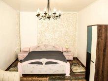 Cazare Cheile Turzii, Shabby Chic Apartment