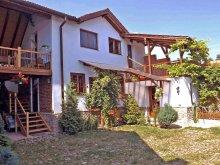Casă de vacanță județul Sibiu, Casa Pelu