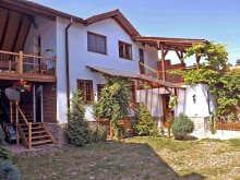 Casă de vacanță Pleșoiu (Nicolae Bălcescu), Casa vale ~ Casa Pelu