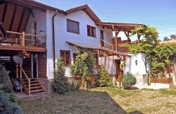 Vacation home near Stolzenburg (Slimnicului) Fortress, Casa Vale ~ Pelu Vacation home