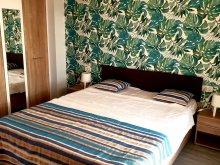 Apartment Râmnicu de Jos, Sofia Blue Apartments
