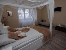 Accommodation Southern Great Plain, Rusztika Villa
