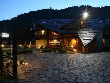 Accommodation Moieciu de Sus, Ad'Oro Guesthouse