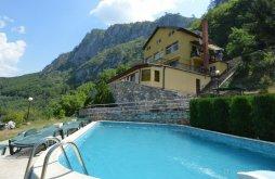Villa Herkulesfürdő közelében, Matei Villa