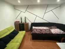 Accommodation Vékény, Tátrai Apartment