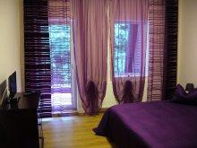 Accommodation Săldăbagiu de Munte, Orhideea Guesthouse