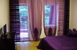 Cazare Tranișu cu Vouchere de vacanță, Pensiunea Orhideea