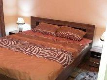 Accommodation Teliucu Inferior, Lusita Apartment