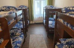 Hostel Braşov county, Vintage Downtown Hostel