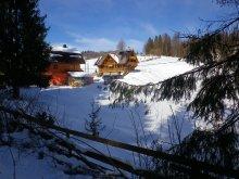 Accommodation Vârtop, Rustic Guesthouse