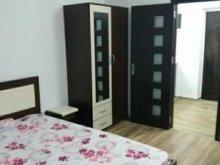 Accommodation Poenița, Studio Apartment