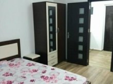 Apartment Piscu Scoarței, Studio Apartment