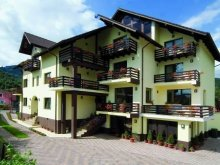 Package Braşov county, Andrei Guesthouse