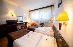 Accommodation Curtici, Best Western Central Hotel