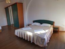 Casă de vacanță Saligny, Casa David