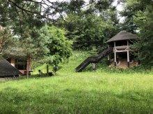 Accommodation Câmpulung Moldovenesc, Africa Chalet