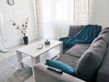 Accommodation Praid, Transilvania Mediasch Apartments