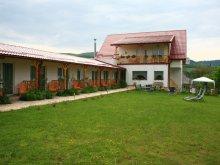 Panzió Kolozs (Cluj) megye, Tichet de vacanță, Poezii Alese Panzió