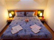 Accommodation Întorsura Buzăului, Sruetti Guesthouse