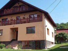 Bed & breakfast Beclean, Maria Boroica Guesthouse