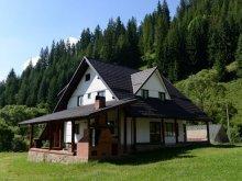 Accommodation Praid, Izvorul Muntelui Guesthouse