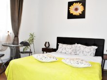 Accommodation Corund, 4Freedom Central Flat Apartment